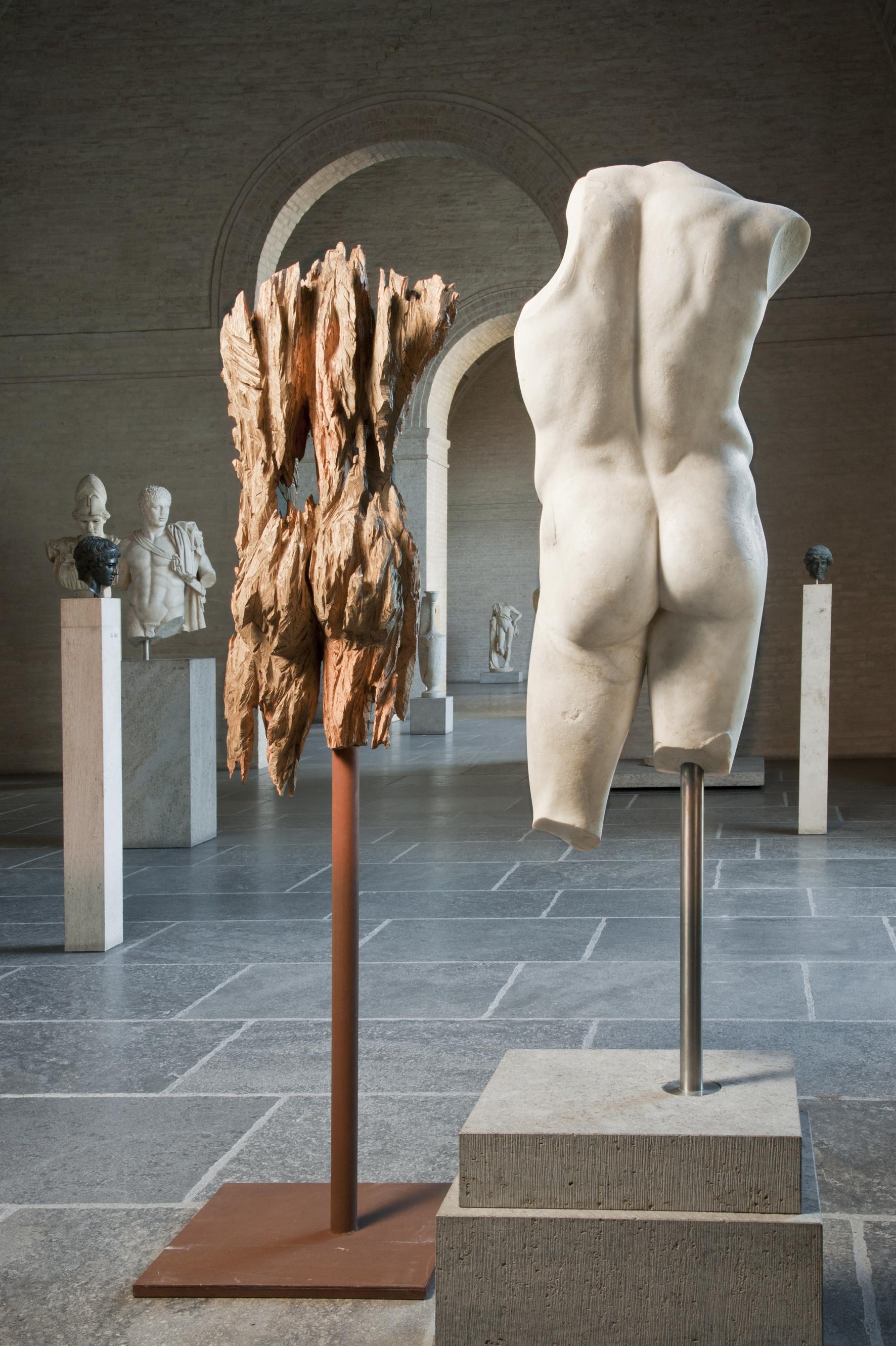 Andreas Kuhnlein, Torso männlich, 2014, Eiche, 120 x 50 x 34 cm © Staatliche Antikensammlungen und Glyptothek München, fotografiert von Renate Kühling