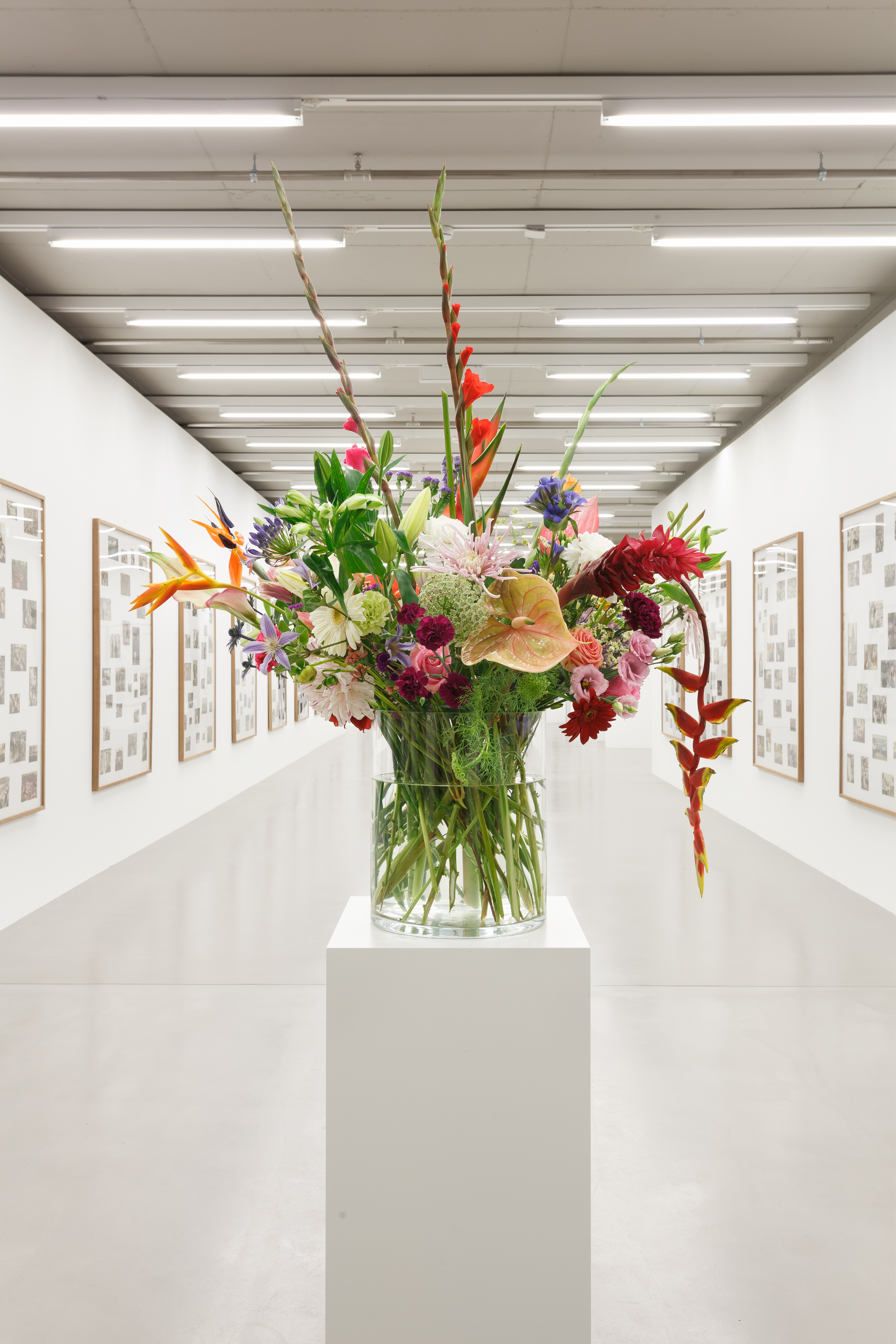 Willem de Rooij, Bouquet V, 2010. Installationsansicht/installation view MMK Museum für Moderne Kunst Frankfurt am Main 2016, Courtesy Sammlung Haubrok, Berlin. Foto/photo: Axel Schneider